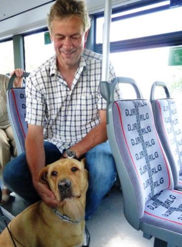 2013 bus und bahn013